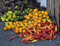 Fresh vegetables at the local market Royalty Free Stock Photos