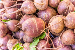Fresh vegetables at local market Royalty Free Stock Images