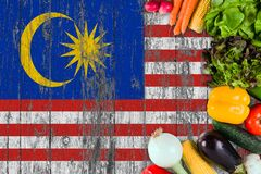 Fresh vegetables from Malaysia on table. Cooking concept on wooden flag background royalty free stock photography