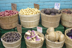 Fresh Vegetables At The Market Stock Photography