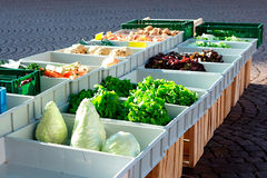 Fresh vegetables on the market. Some green vegetables in boxes on the market. Very sunny Royalty Free Stock Photo