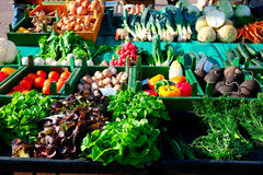 Fresh vegetables on the market. Some fresh vegetables at the market on very sunny day royalty free stock photo