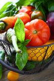 Fresh vegetables in metal basket Stock Photos