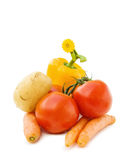 Fresh vegetables mix. Fresh vegetables for healthy cooking - potato, carrots, tomato and pepper. With yellow flower decoration, isolated on white background Royalty Free Stock Images