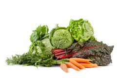 Fresh Vegetables. Mix of fresh vegetables: lettuce, cabbage, broccoli rabe, red chard and carrots, isolated on white background Stock Photos