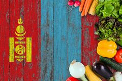 Fresh vegetables from Mongolia on table. Cooking concept on wooden flag background royalty free stock photography