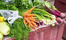 Fresh vegetables of new harvest ready to sale Stock Photos