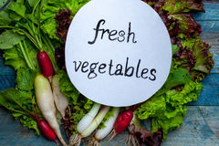 Fresh vegetables with note. Scallions red white radish and green lettuce with note fresh vegetables on wooden background Stock Photos