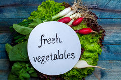 Fresh vegetables with note. Scallions red white radish and green lettuce with note fresh vegetables on wooden background Stock Photo