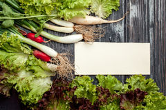 Fresh vegetables with note. Scallions white red radish and green lettuce with empty note on wooden background Royalty Free Stock Image