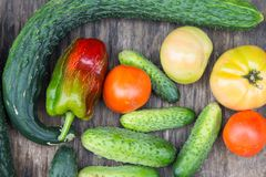 Fresh vegetables on old wooden table. Organic cucumber, tomatoes Royalty Free Stock Images