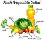 Fresh vegetables and olive oil for salad Royalty Free Stock Photo