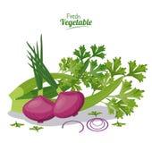 Fresh vegetables onion celery nutrition diet. Vector illustration Stock Image