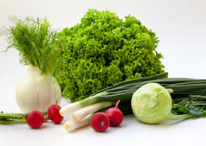 Fresh vegetables. Fresh organic vegetables are full of vitamins and fibers Stock Photos