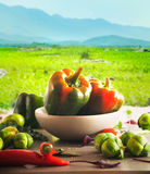 Fresh vegetables outdoor Royalty Free Stock Images