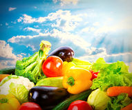 Fresh vegetables over blue sunny sky. Harvest concept background Stock Photography