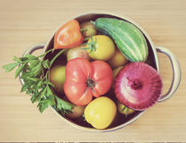 Fresh vegetables in pan. Fresh different vegetables in steel pan Stock Images