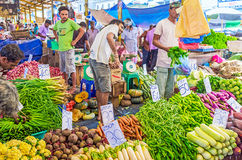 The fresh vegetables in Pettah Stock Photography