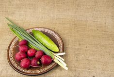 Fresh vegetables on a plate - radishes, onions, cucumbers stock photos