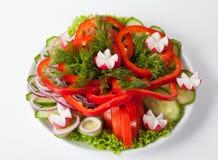 Fresh vegetables plate Stock Images