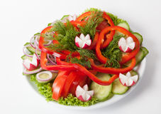 Fresh vegetables plate. Fresh raw vegetables cutted on white plate Stock Photo