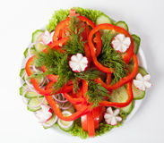 Fresh vegetables plate. Fresh raw vegetables cutted on white plate Royalty Free Stock Photos
