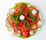 Fresh vegetables plate Royalty Free Stock Photos