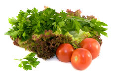 Fresh vegetables and potherb for salad. Resh vegetables and potherb for salad on a white background Royalty Free Stock Images