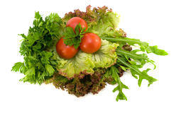 Fresh vegetables and potherb for salad. On a white background Stock Image