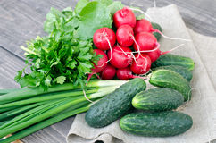 Fresh vegetables. Fresh radishes, cucumbers, green onions, parsley on a wooden table Royalty Free Stock Photo