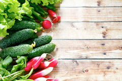 Fresh vegetables - radishes, cucumbers, onions. Food closeup Stock Photos