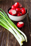 Fresh vegetables, radishes and onions. Food Stock Images
