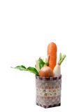Fresh vegetables Raw Carrot,onion,radish in basket isolated on w Stock Photo