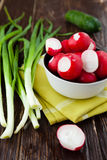 Fresh vegetables ready for a salad, radishes and onions. Food Royalty Free Stock Image