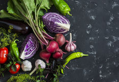 Fresh vegetables - red cabbage, beets, eggplant, peppers, garlic, tomatoes, herbs on a dark background. Raw ingredients. Royalty Free Stock Photos