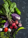 Fresh vegetables - red cabbage, beets, eggplant, peppers, garlic, tomatoes, herbs on a dark background. Raw ingredients. Royalty Free Stock Images