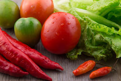 Fresh vegetables: red chilli, birds eye chilli, lettuce, red tomato and green tomato Royalty Free Stock Image