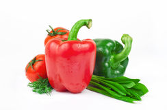 Fresh vegetables, red and green peppers, tomatoes, dill and rams Royalty Free Stock Photos