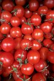 Fresh vegetables red tomatoes with green tails a close up in a box, a box a background in the market healthy royalty free illustration