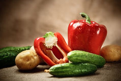 Fresh vegetables on the sacking background Stock Image