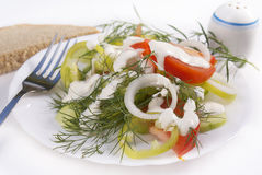 The fresh vegetables salad royalty free stock image