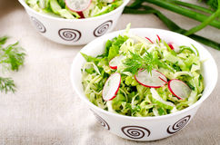 Fresh vegetables salad with cabbage, radishes. dill and greens. On white bowl Royalty Free Stock Images