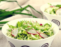 Fresh vegetables salad with cabbage, radishes. dill and greens. On white bowl Stock Photos