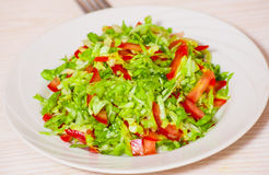 Fresh vegetables salad with cabbage. On white plate Royalty Free Stock Image