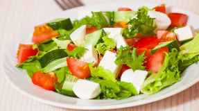 Fresh vegetables salad with cheese Royalty Free Stock Photos
