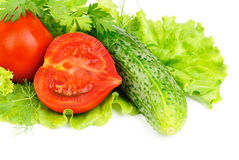 Fresh vegetables (salad, cucumber, lettuce) Royalty Free Stock Images