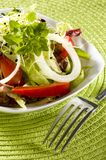 Fresh vegetables salad with fork Royalty Free Stock Photo