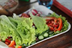 Fresh vegetables with salad and greens Royalty Free Stock Images