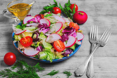 Fresh vegetables salad. Healthy vegetarian food, fresh vegetables salad with different vegetables radishes, cherry tomatoes, lettuce salad, dill, sauce olive oil Stock Photography