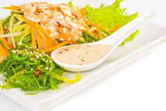 Fresh Vegetables Salad with Nuts Sauce and Chuka salad Stock Photos